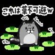 限定スタンプ::草不可避w ボンレス猫スペシャルスタンプ