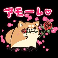 限定無料スタンプ::アモーレ♡ボンレス犬&ボンレス猫