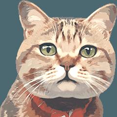 人気スタンプ特集::岩合光昭 ネコスタンプ