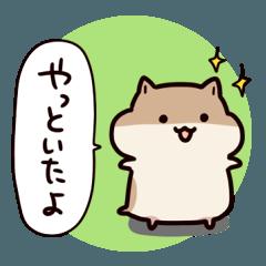 人気スタンプ特集::ひとことハムスター~思いやり~
