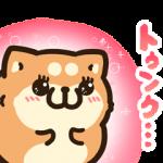 限定無料スタンプ::タイムラインで使える★ボンレス犬と猫