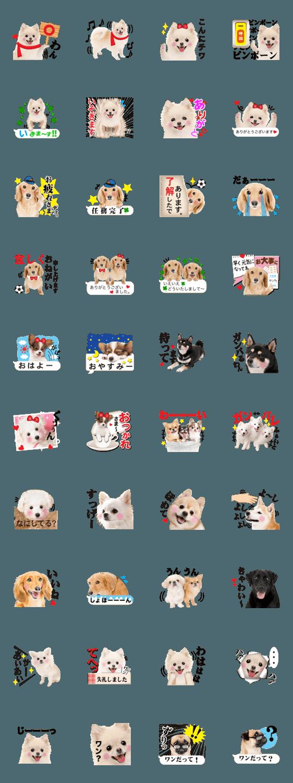 人気スタンプ特集::かわいい犬たち