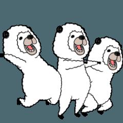 人気スタンプ特集::笑うアルパカ2