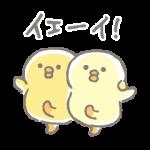 人気スタンプ特集::ぴよこ豆
