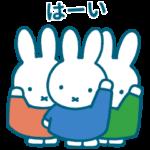 数量限定/隠し無料スタンプ::Pinkoi × miffy
